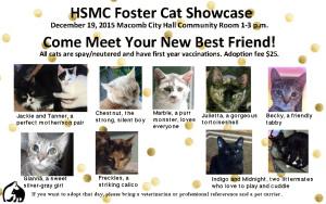 Foster showcase